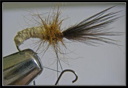 une nymphe grosse truite nicolas39 p che la mouche fly shop. Black Bedroom Furniture Sets. Home Design Ideas