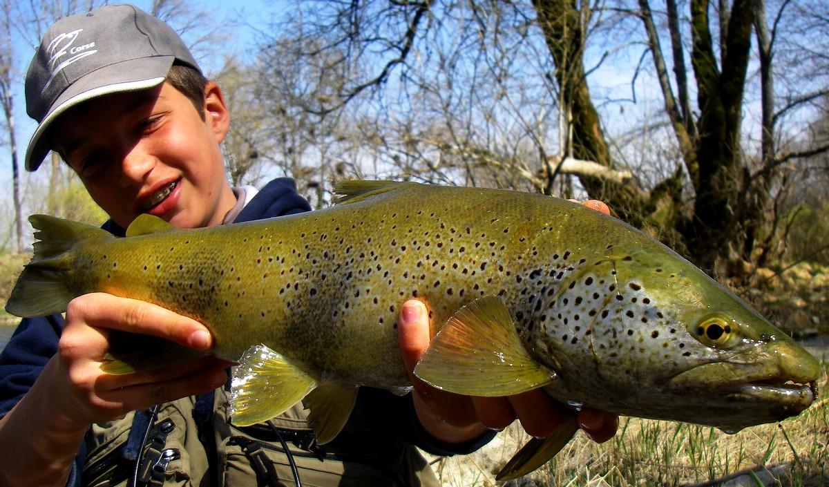 Vidéo la pêche sur la carpe dans le domaine de Tchéliabinsk